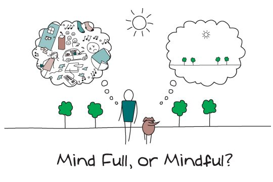 Mindfulness and cultivate calm