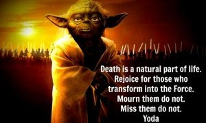 Yoda - death